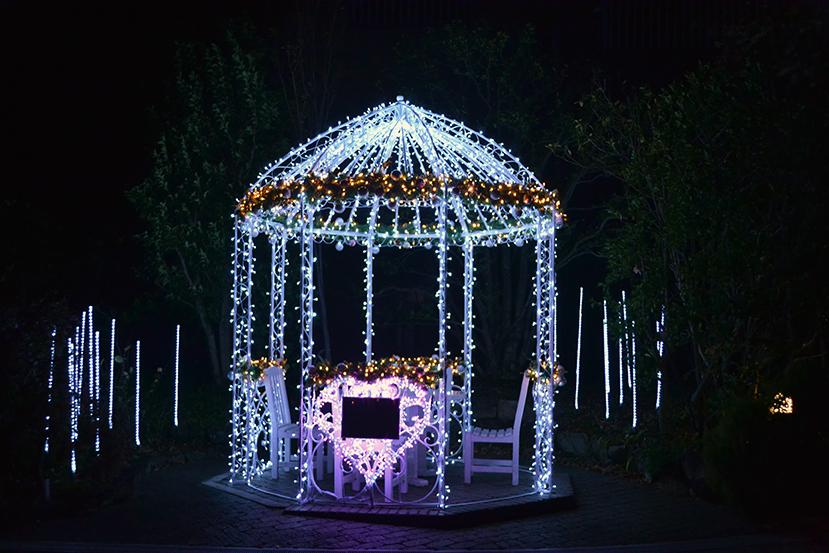 【クリスマスデート】安城デンパークのイルミネーションがロマンチック!